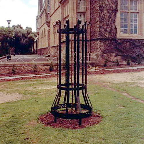Heritage Tree Guard